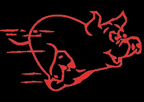 Wuzzelauf-Wuzz