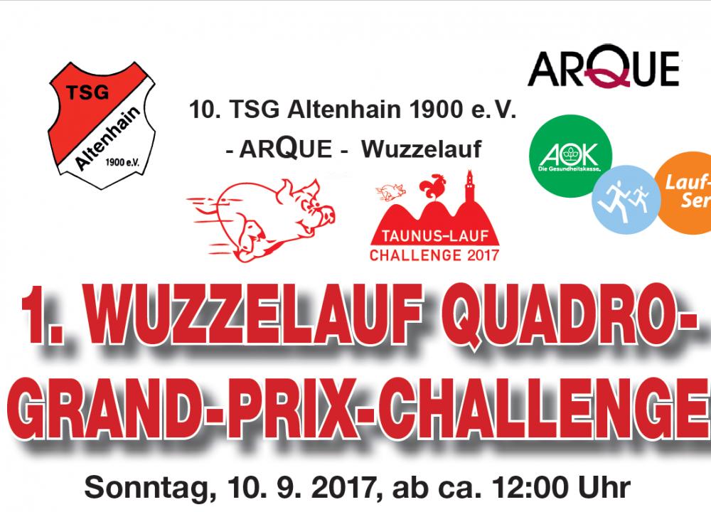Banner Wuzzelauf-Quadro-GP 2017