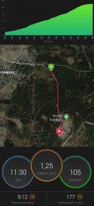 Auszug aus dem Tracker von Matthias Flörke (Strecke und Kalorienverbrauch im Überblick)